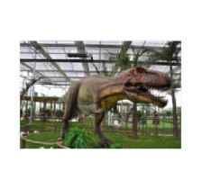 恐龙乐园哪家好